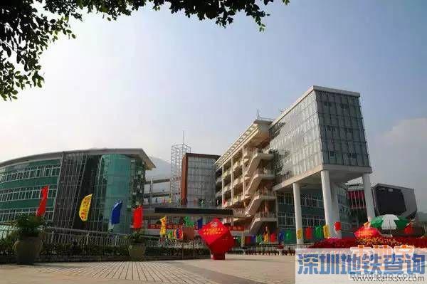 深圳4大名校入读攻略 如何进入深圳外国语学校?