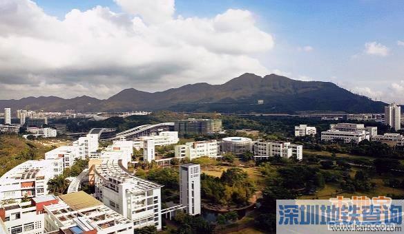深圳有哪些大学?口碑好地的大学