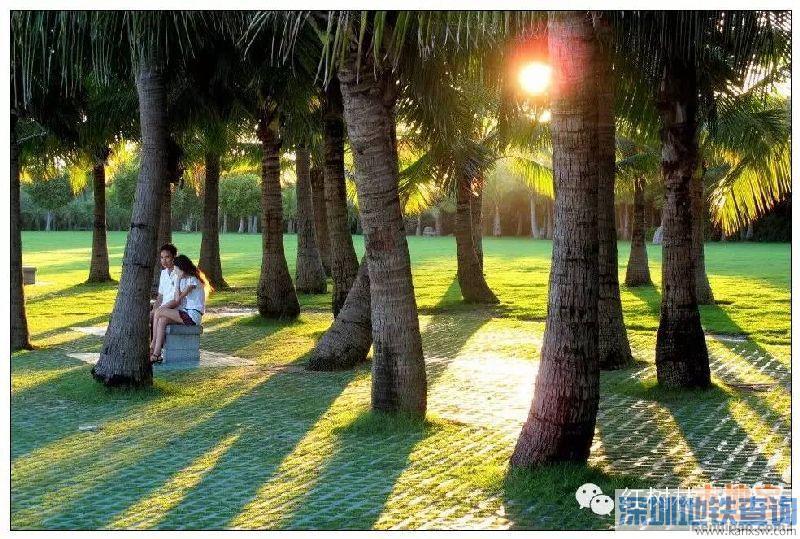 深圳又添四所自然学校 深圳自然学校有几所?