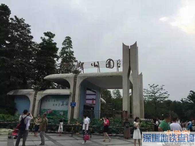 今年深圳建12个花卉主题公园 附各公园赏花时间表