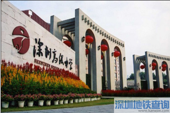2016深圳中考平均分344分 第一批录取分数线16日公布
