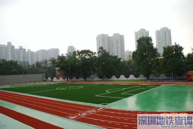 深圳大鹏新年马拉松2018年1月1日这些路段将封闭