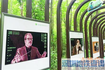 2016南京森林音乐会停车场在哪?停车后怎么到音乐台?公交地铁怎么去?