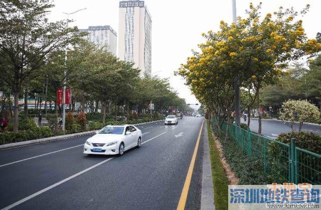 深圳龙华区华荣路改造工程12月底完成