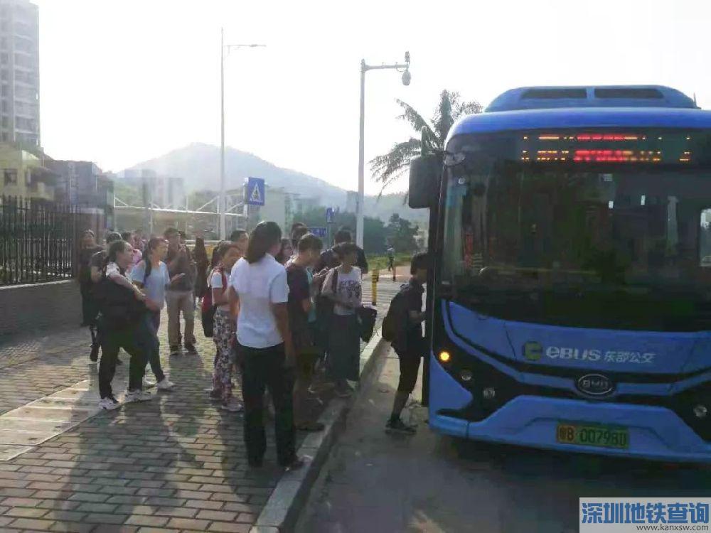深圳大鹏微巴公交线路B983首末班车运营时间、票价、停靠站点一览