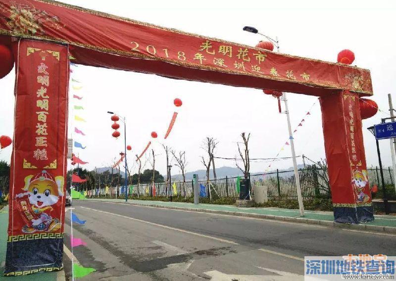 深圳各区2018迎春花市举办地点汇总一览