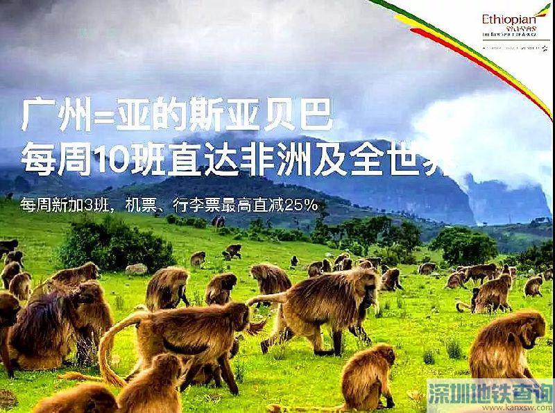 广州飞亚的斯亚贝巴2018年4月2日起每周将新增3班
