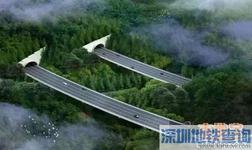 南坪快速路3期隧道距离打通仅剩400米 预计2018年底通车