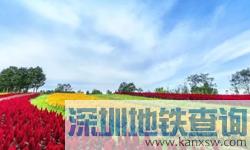 2018北京中秋节活动大盘点(更新中)