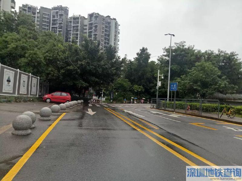 深圳龙岗这条路改造完成 取消路边停车位+增设自行车专用道