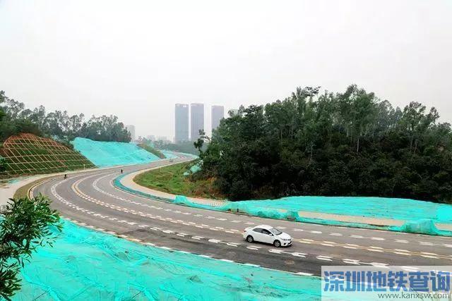 深圳龙华观湖平安路近日正式竣工贯通 连通观澜大道与环观南路