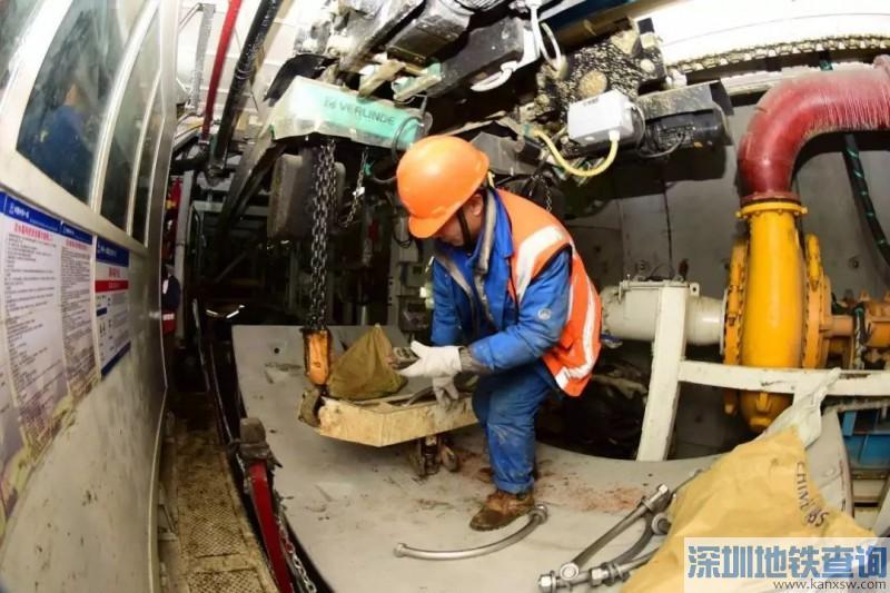 青岛地铁8号线7座车站主体结构近日顺利封顶