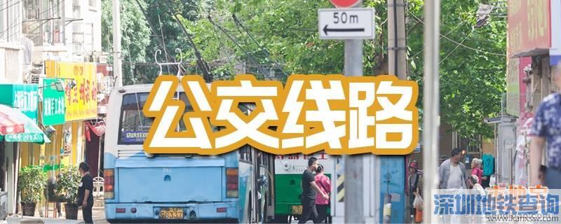 广州公交2020年12月调整汇总一览